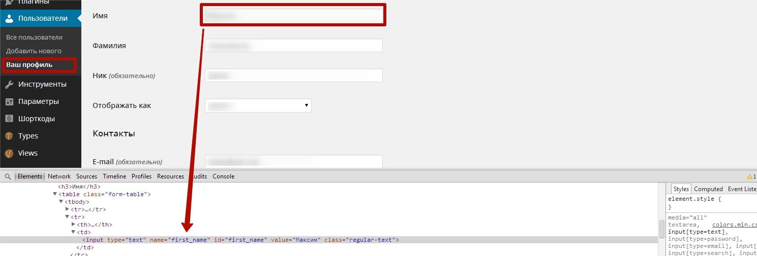 Берем имя поля для редактирования WordPress