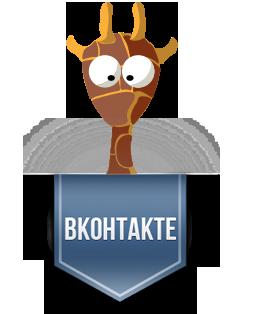 WordPress Vkontakte подписка на группу