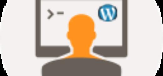 разработка сайта: responsive site divelopment wordpress